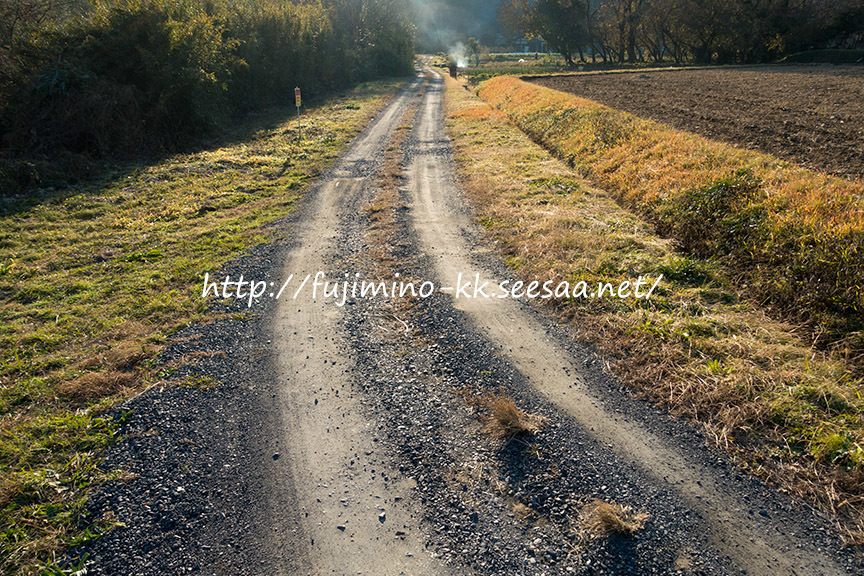 田舎道散策