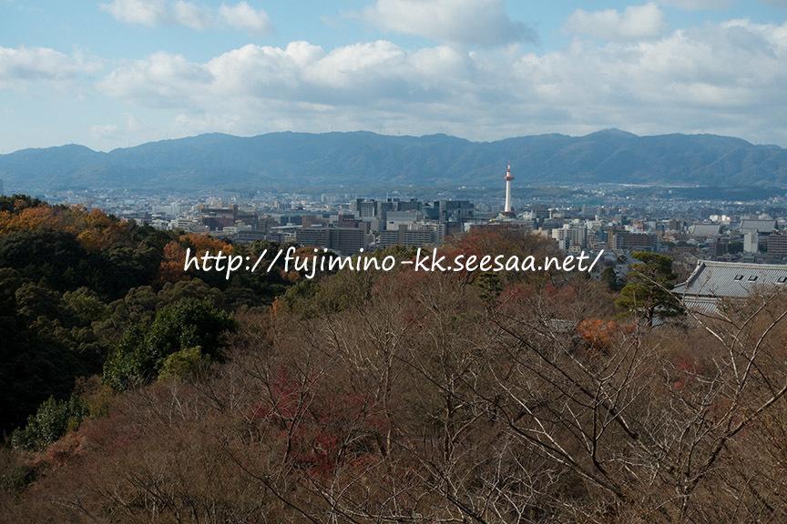 京都市内を望む
