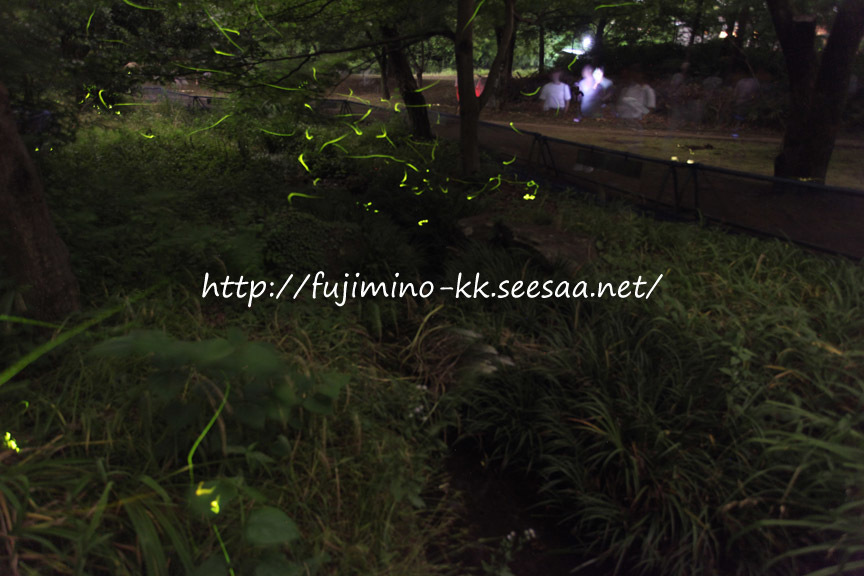 清瀬金山緑地公園